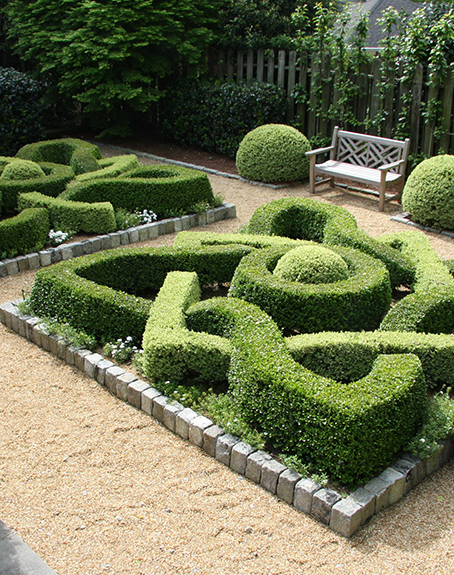 Boxwood garden design ajf design for Garden hedge designs