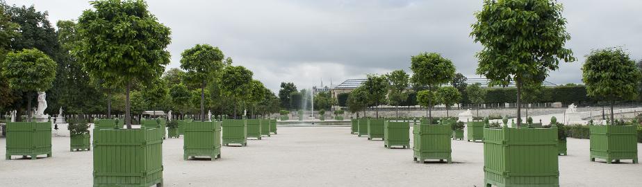 Cau De Versailles Bo In The Tuileries Garden