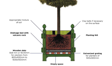 Diagram Demonstrating How To Plant